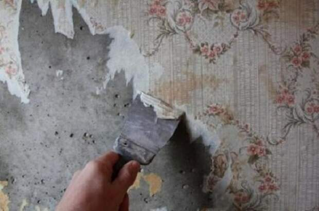 3 ошибки, которые совершают новички при подготовке стен к поклейке обоев