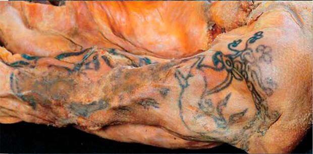 Татуировка на плече мумии женщины. Курган1, могильник Ак-Алаха-3. Музей ИАЭТ СО РАН