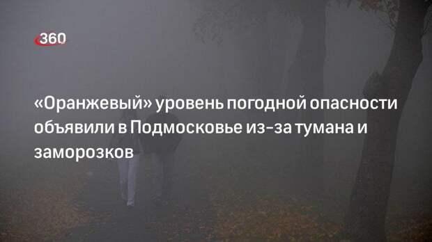 «Оранжевый» уровень погодной опасности объявили в Подмосковье из-за тумана и заморозков