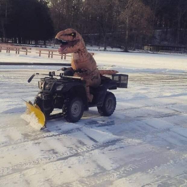 Динозавр убирает снег