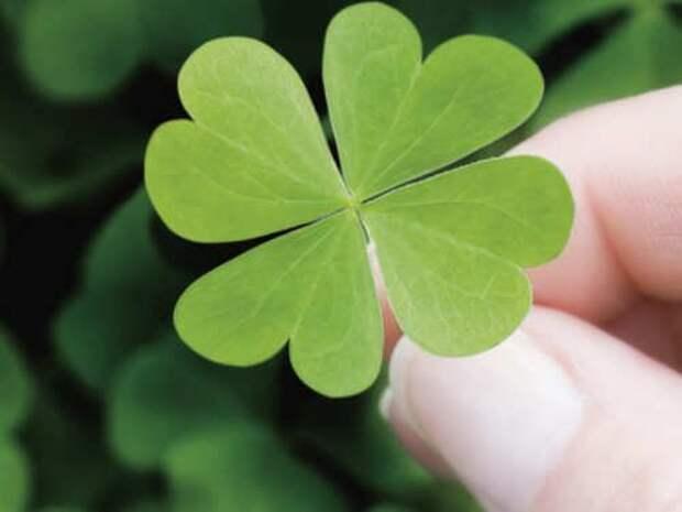 5 лучших примет на удачу