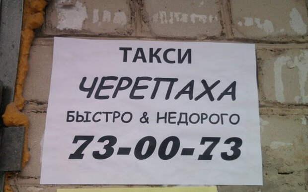 6429пa1dc68_b (600x375, 65Kb)