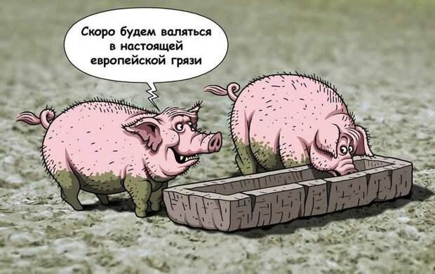 Украина. Итоги года жизни с широко закрытыми глазами