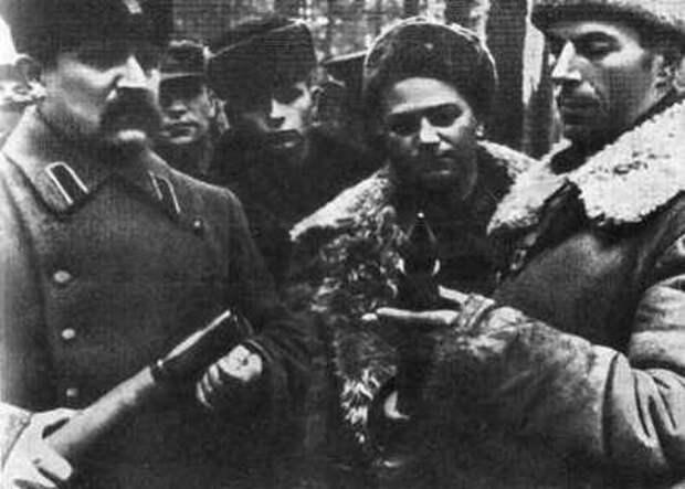 «Победители»: сколько немецких генералов уничтожил партизанский отряд Дмитрия Медведева