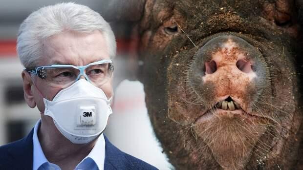 «Собянину подложили очень большую свинью». Депутат Лебедев раскритиковал введение графика прогулок вМоскве