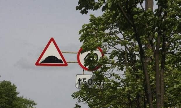 Жителей Молжаниновского просят сообщать о дорожных знаках, скрытых листвой