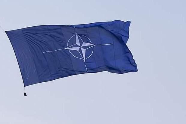 Рожин рассказал о препятствия для Трампа в вопросе вывода США из НАТО