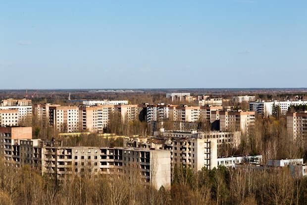В чернобыльской зоне отчуждения исчезают воробьи