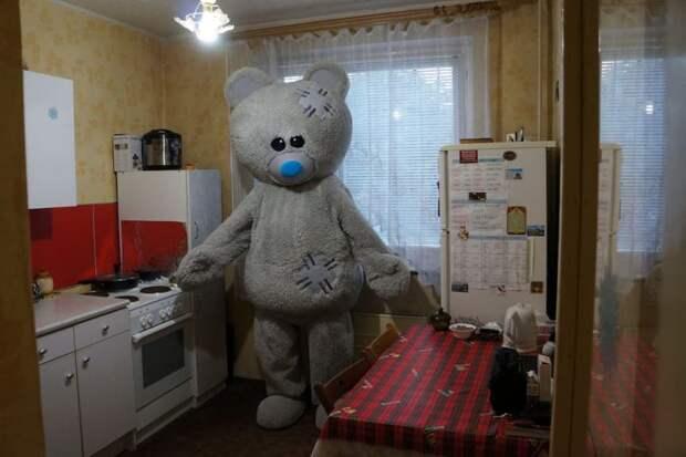Как сдать квартиру сдушой иизюминкой: мишка презентует берлогу