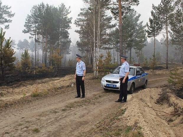 Как ГИБДД вымогает деньги у водителей, съехавших с дороги в лес