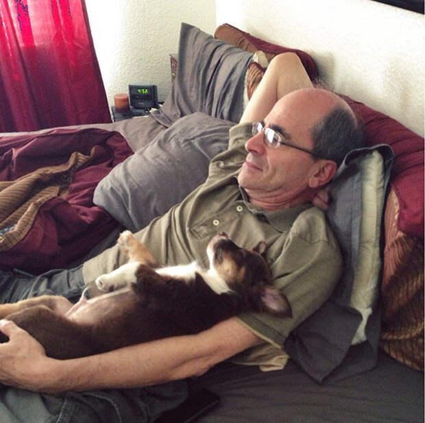 Эти отцы запрещали приводить в дом собаку