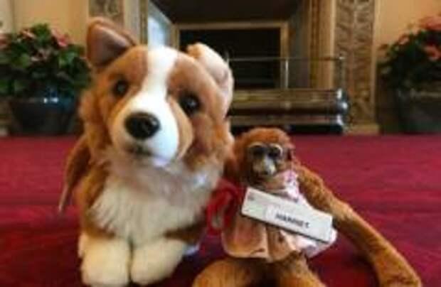 Букингемский дворец вернул забытую игрушку после письма королеве
