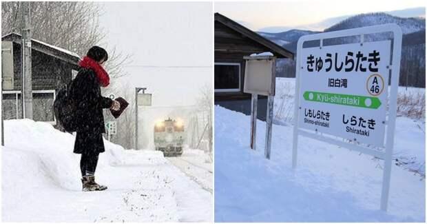 Удивительная история: в Японии есть вокзал, который работает только для одного постоянного пассажира