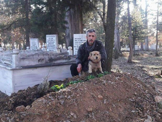 Он расплакался, когда понял, куда убегает каждое утро его собака
