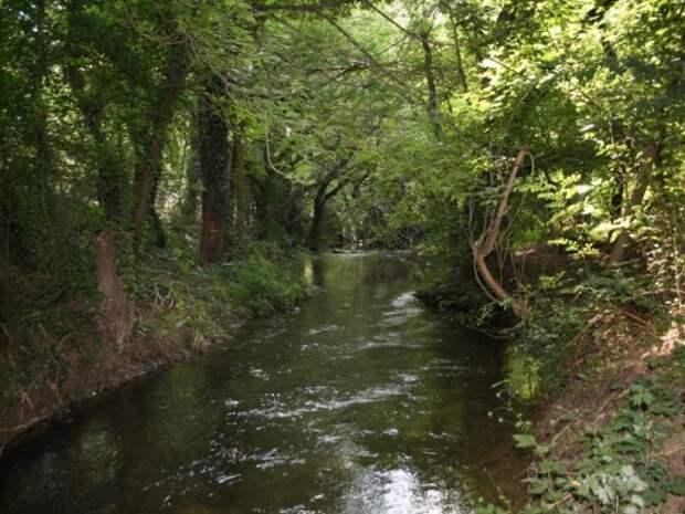 В Севастополе на берегу реки Черная было обнаружено тело