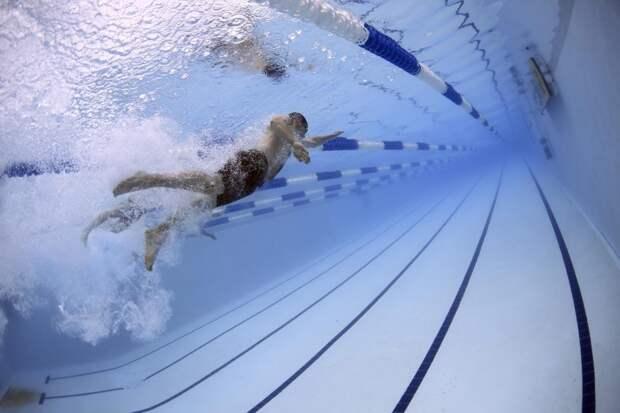 В марте в «Академическом» организуют принятие нормативов по плаванию
