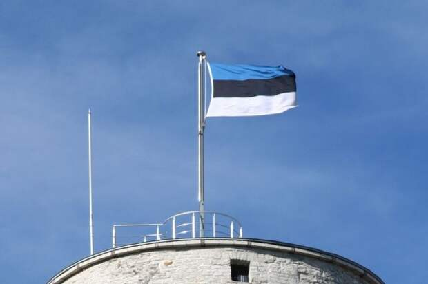 На выборах в Таллине победила партия, отстаивающая интересы русских жителей