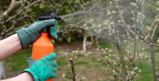Украину накрыла волна преступлений, связанных с захватом сельхозземли, и фермеры просят власти защитить их...