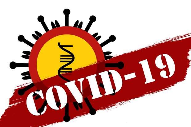 Факты и фейки о новом коронавирусе COVID-19. Хроника инфодемии |  Factcheck.kz
