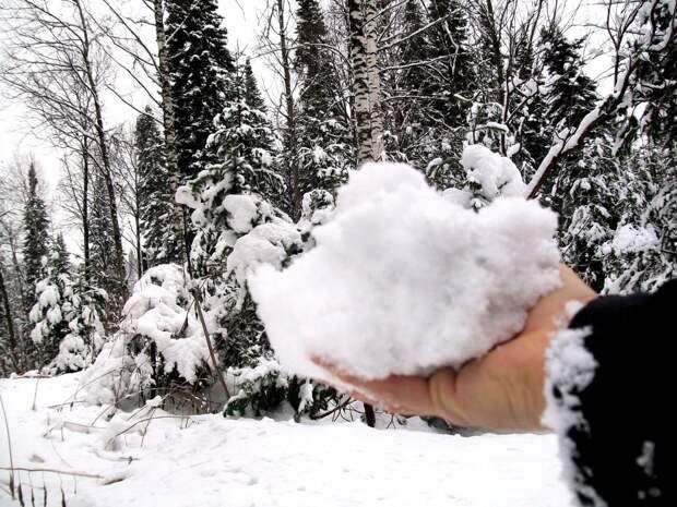 Жду снегов (Юрий Михайлов)