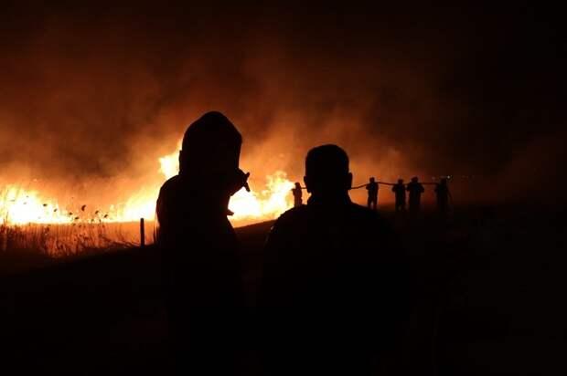 Под Анапой ликвидируют пожар в плавнях
