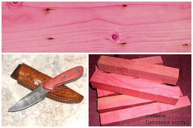 Пинк айвори (англ. pink ivory, розовая слоновая кость), умнини, умголоти — очень редкая экзотическая порода дерева из Южной Африки деревья, древесина, интересное, природа, факты