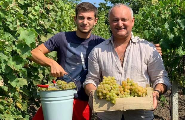 Молдавская продукция никому на Западе не нужна – Путин