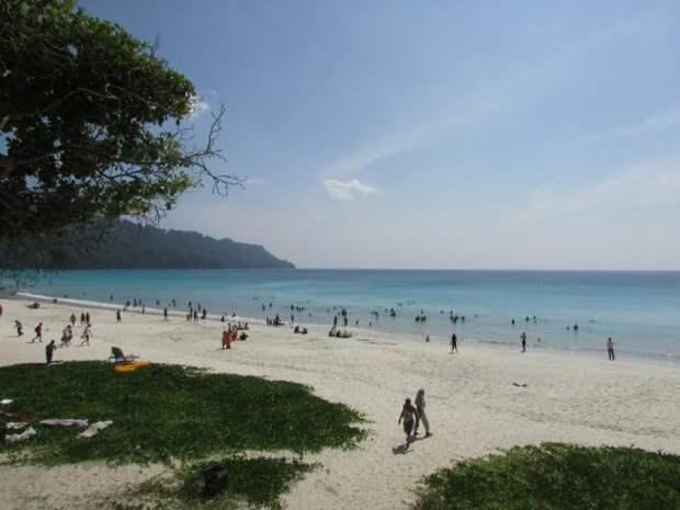 Radhanagar Beach - Изображение Radhanagar Beach, Остров Хавелок -  Tripadvisor