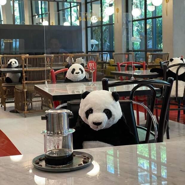 Люди начали ходить в рестораны после карантина, но выглядит это странновато