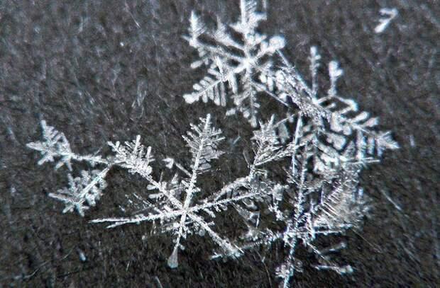 Скоро на всех улицах страны: интересные факты о снеге