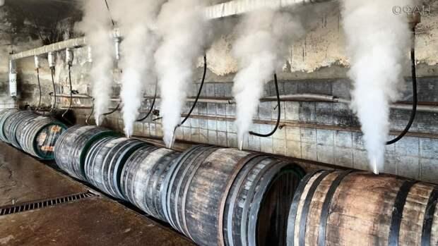 Место, где рождается напиток богов: на заводе «Коктебель» раскрыли будущее виноделия
