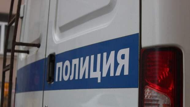 Полиция задержала лидера петербургского отделения ЛПР Мацапулину