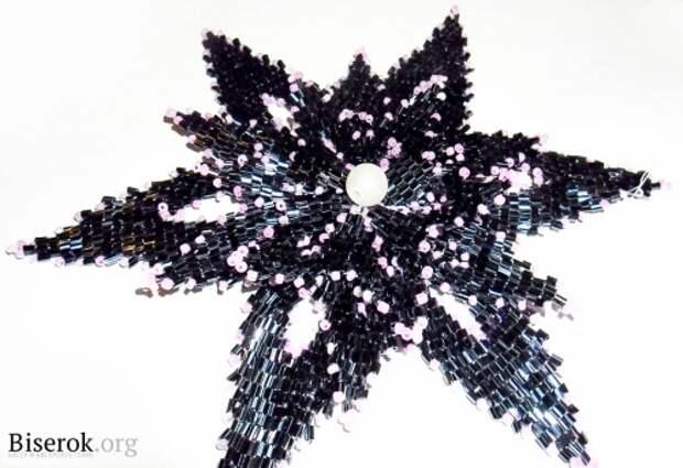 черный цветок