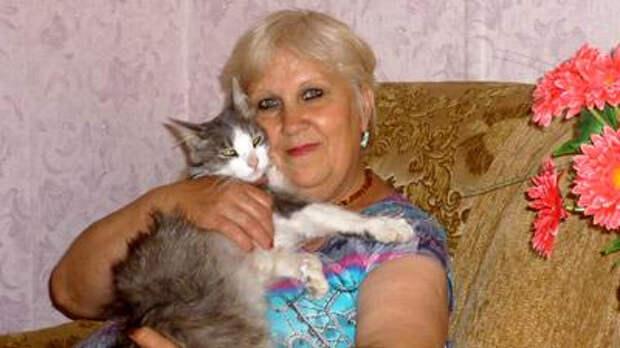 Кот прошел 3000 км в поисках уехавших хозяев