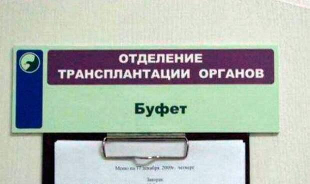 Загонные объявления и надписи (12 фото)