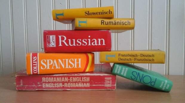 В России проведут экспертизу правил русского языка