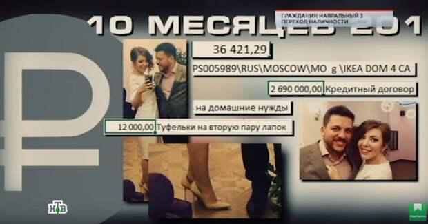 """Мошенникам место в тюрьме: куда Навальный и Волков потратили деньги с """"предвыборной кампании"""" блогера"""