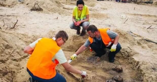 ВПольше найдено массовое захоронение детей смонетами ворту