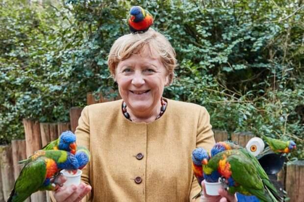 Финиш у Ангелы Меркель просто катастрофический