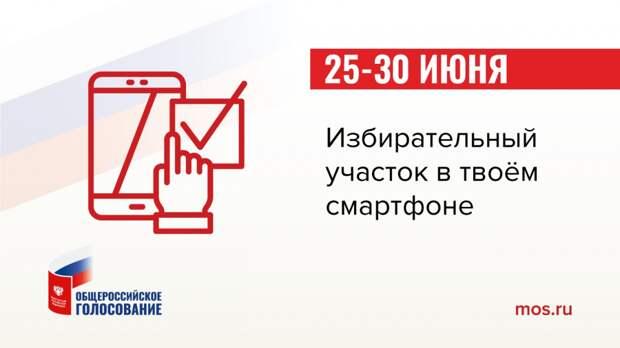 Проголосовать по внесению изменений в Конституцию можно будет до 1 июля