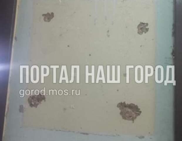 В подъезде на улице Генерала Белобородова информационную доску убрали, обнажив старые стены