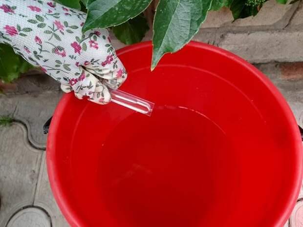 Первый шаг приготовления раствора - препарат выливают в 1 л воды