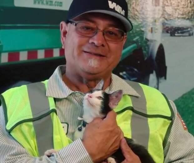 «Скукожился тряпочкой…» Котёнка, застрявшего в грузовике с отходами, спасли и усыновили!