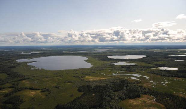 Углеводороды наГыданском полуострове будет разрабатывасть СП«Газпром нефти» иShell