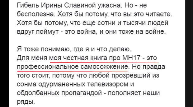 MH_17-Book-SS