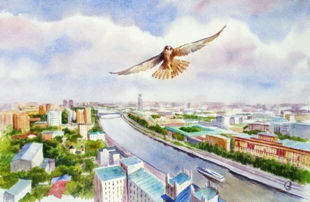 Участники конкурса от Мосприроды посвятили Москве-реке более ста работ