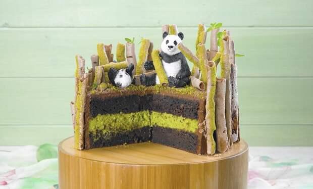 Шоколадный торт «Бамбуковый лес»: с уникальным декором из безе
