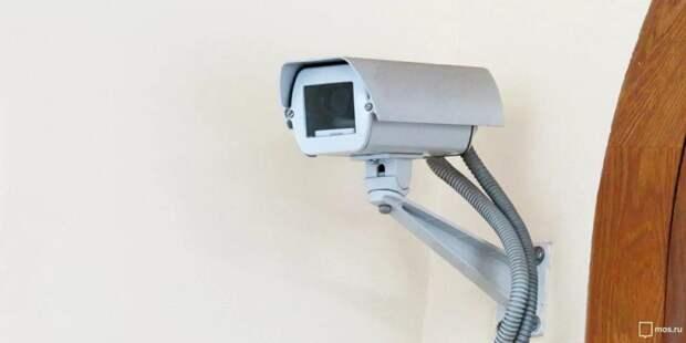 Реут: Видеонаблюдение за ходом голосования будет доступно онлайн. Фото: mos.ru