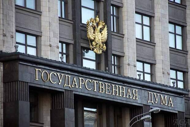 В Госдуме заявили о десяти иностранных центрах, готовящих беспорядки в России