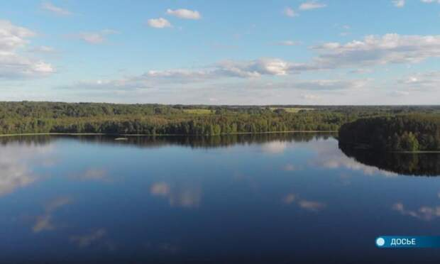 ВАрхангельской области проводят инвентаризацию лесного фонда